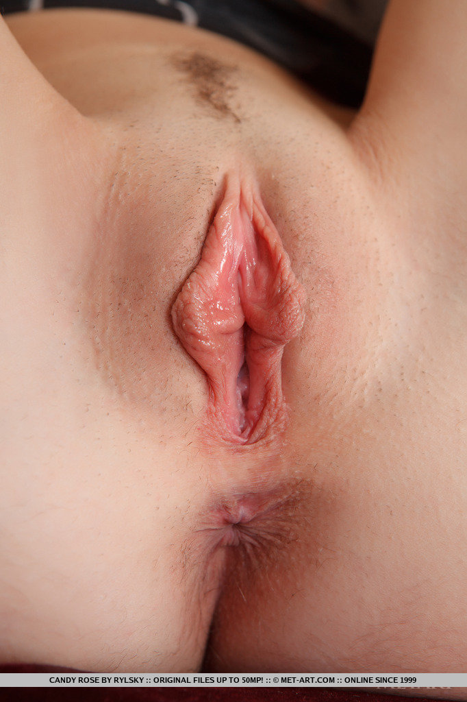 virgin Puffy pussy shaved