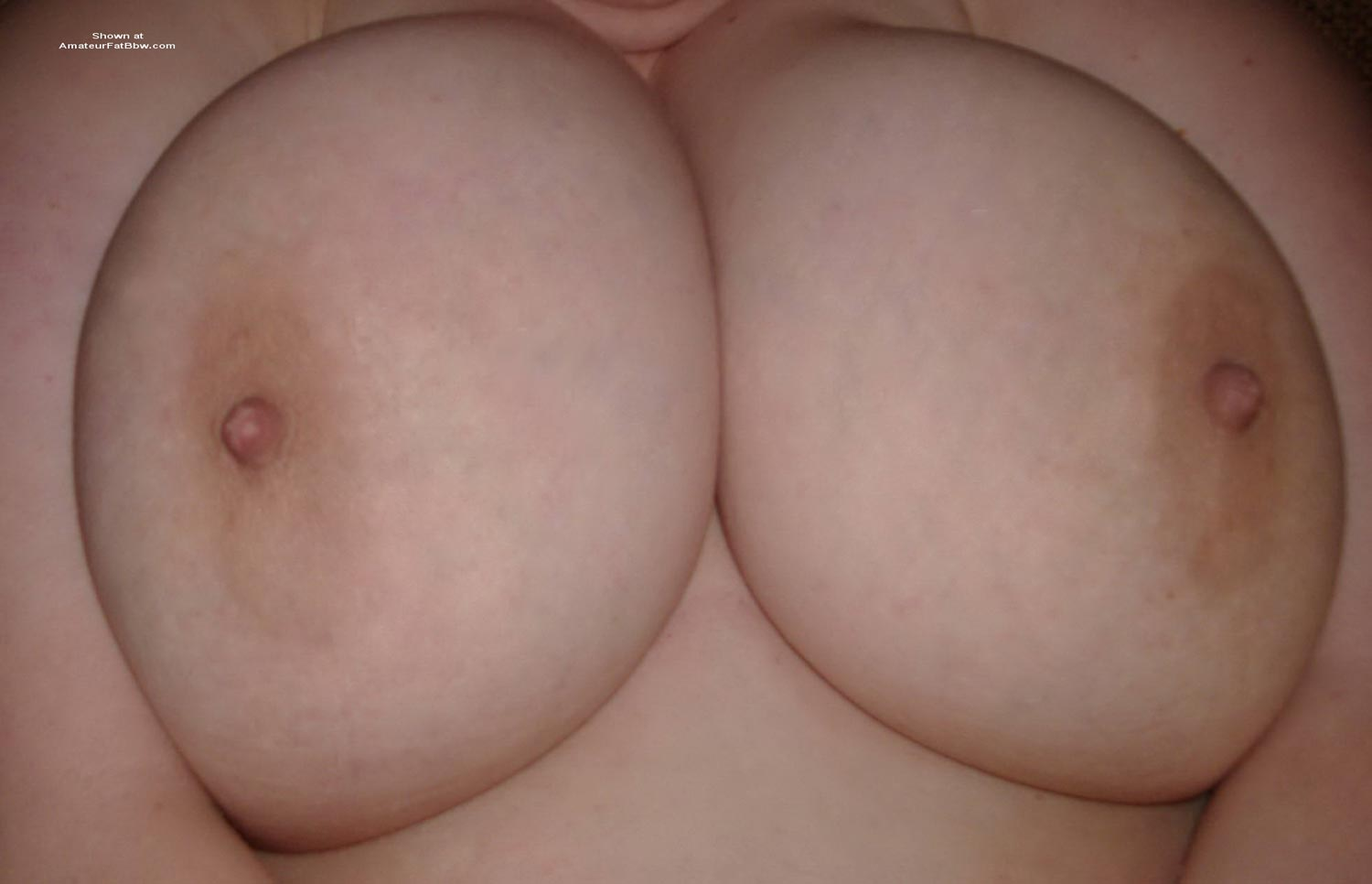 no tits girls with Chubby