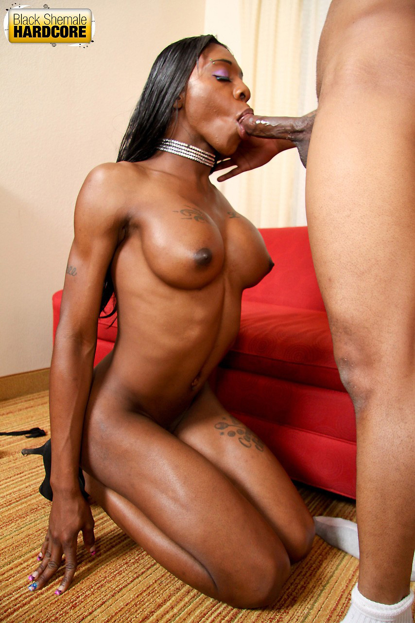 shemale xxx Black sex
