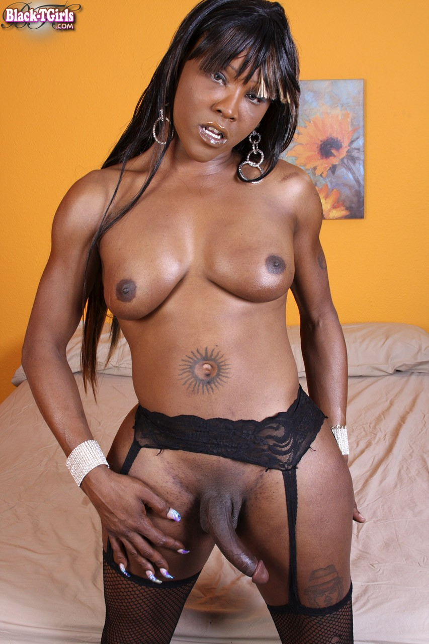 shemale Ts krystal black